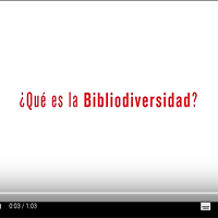 ¿ Qué es la Bibliodiversidad?